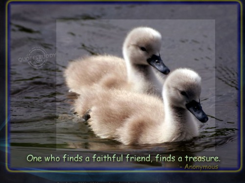 friends quotes wallpapers. Posted in Best Friend Quotes