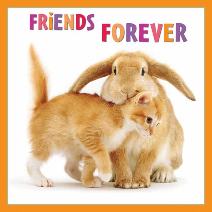 friends forever wallpapers with quotes. Friends Forever