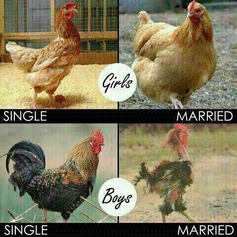 Girls_boys